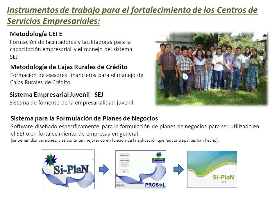 Instrumentos de trabajo para el fortalecimiento de los Centros de Servicios Empresariales: Metodología CEFE Formación de facilitadores y facilitadoras