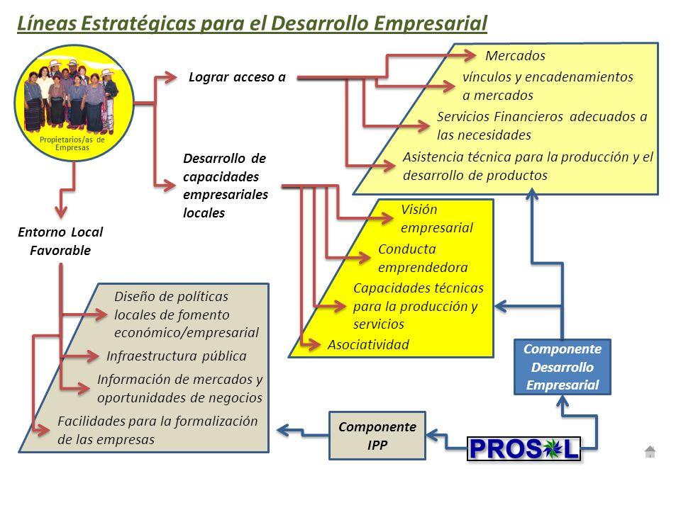 Líneas Estratégicas para el Desarrollo Empresarial Propietarios/as de Empresas Mercados vínculos y encadenamientos a mercados Visión empresarial Condu