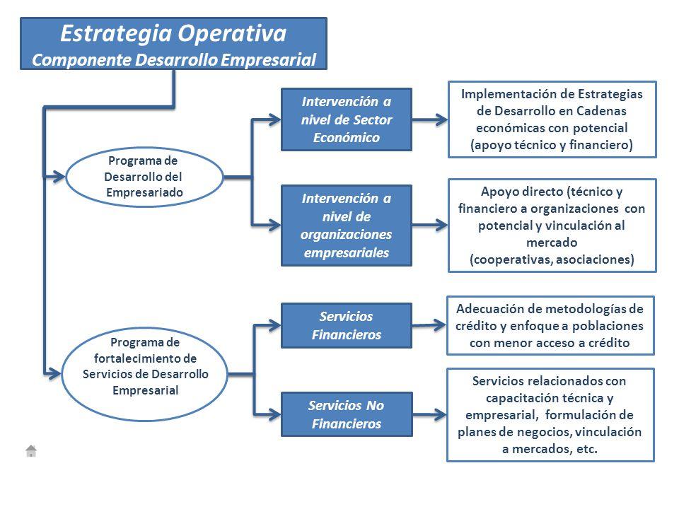 Programa de Desarrollo del Empresariado Implementación de Estrategias de Desarrollo en Cadenas económicas con potencial (apoyo técnico y financiero) A