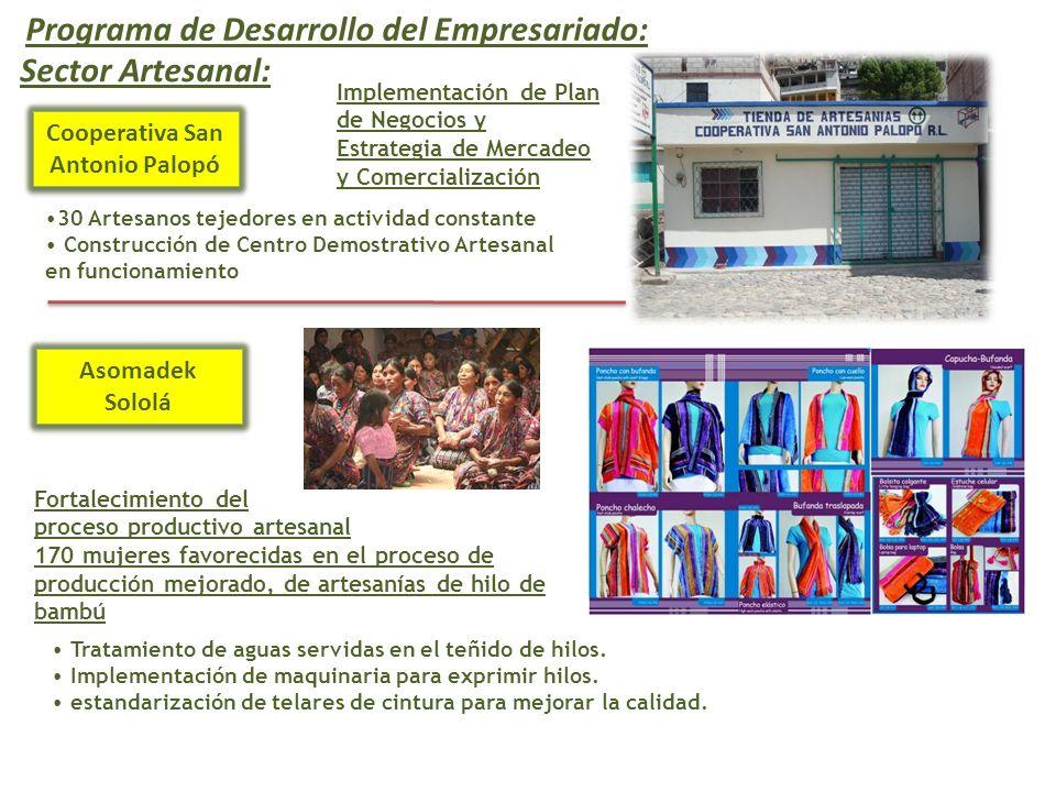 Cooperativa San Antonio Palopó Implementación de Plan de Negocios y Estrategia de Mercadeo y Comercialización 30 Artesanos tejedores en actividad cons