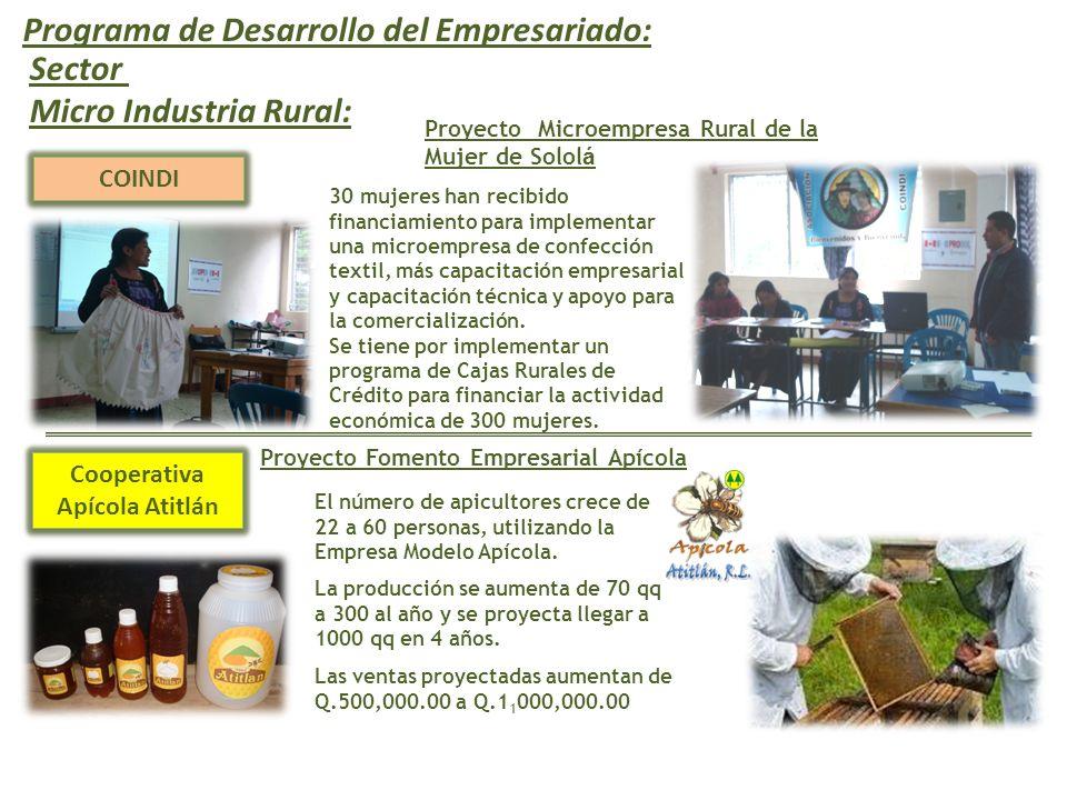 Programa de Desarrollo del Empresariado: COINDI Proyecto Microempresa Rural de la Mujer de Solol á Sector Micro Industria Rural: 30 mujeres han recibi