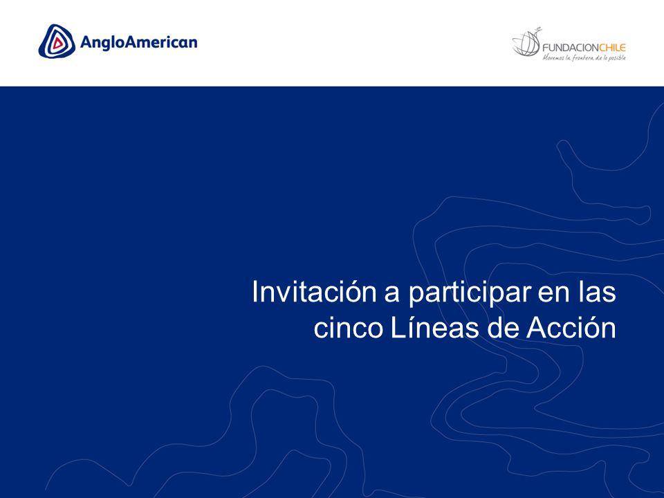 Invitación a participar en las cinco Líneas de Acción