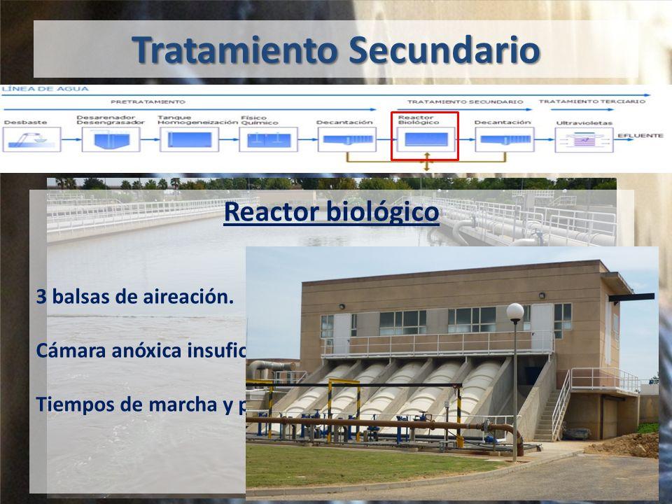 Tratamiento Secundario Reactor biológico 3 balsas de aireación.
