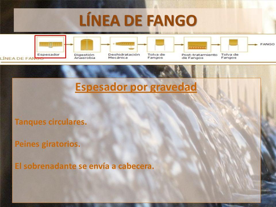 LÍNEA DE FANGO Espesador por gravedad Tanques circulares.