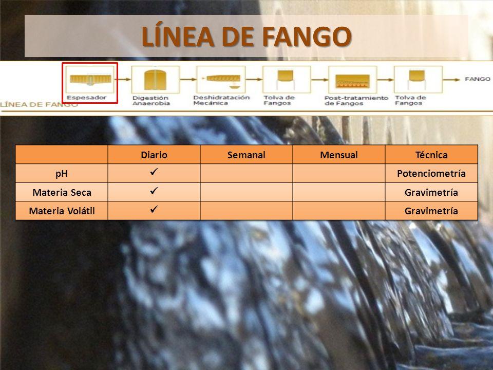 LÍNEA DE FANGO