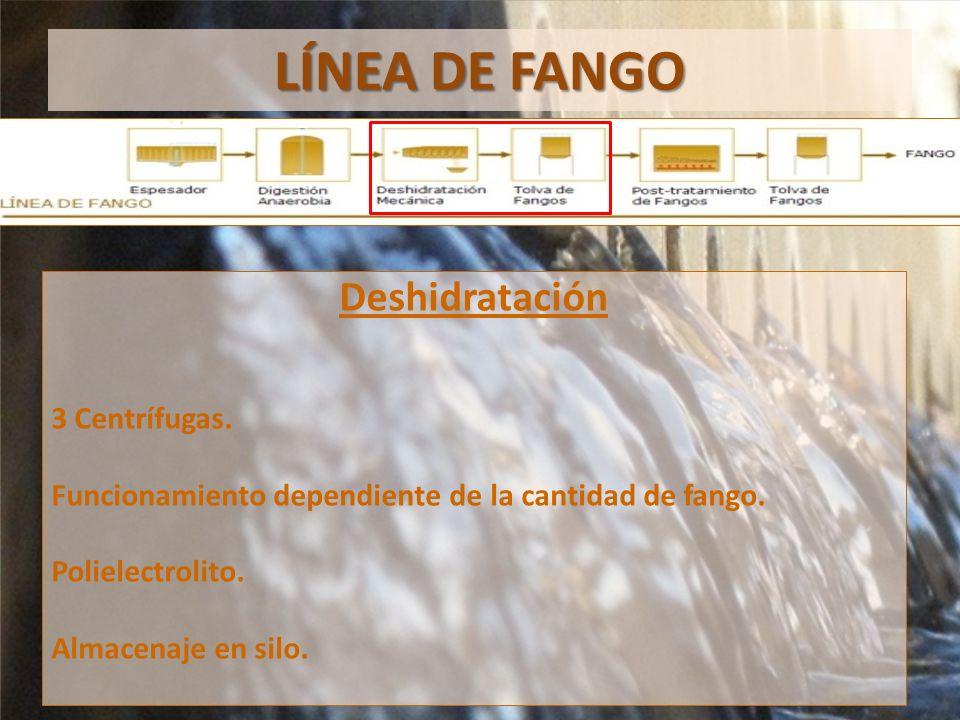 LÍNEA DE FANGO Deshidratación 3 Centrífugas.Funcionamiento dependiente de la cantidad de fango.