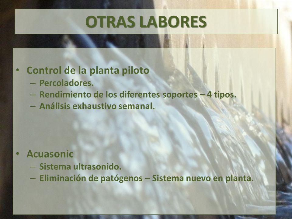 OTRAS LABORES Control de la planta piloto – Percoladores.