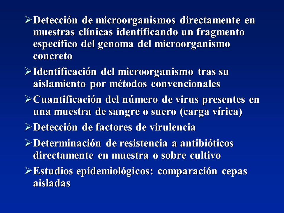 Detección de microorganismos directamente en muestras clínicas identificando un fragmento específico del genoma del microorganismo concreto Detección
