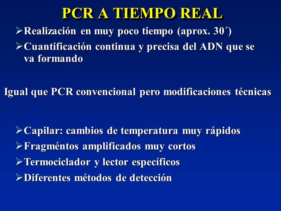 PCR A TIEMPO REAL Realización en muy poco tiempo (aprox. 30´) Realización en muy poco tiempo (aprox. 30´) Cuantificación continua y precisa del ADN qu