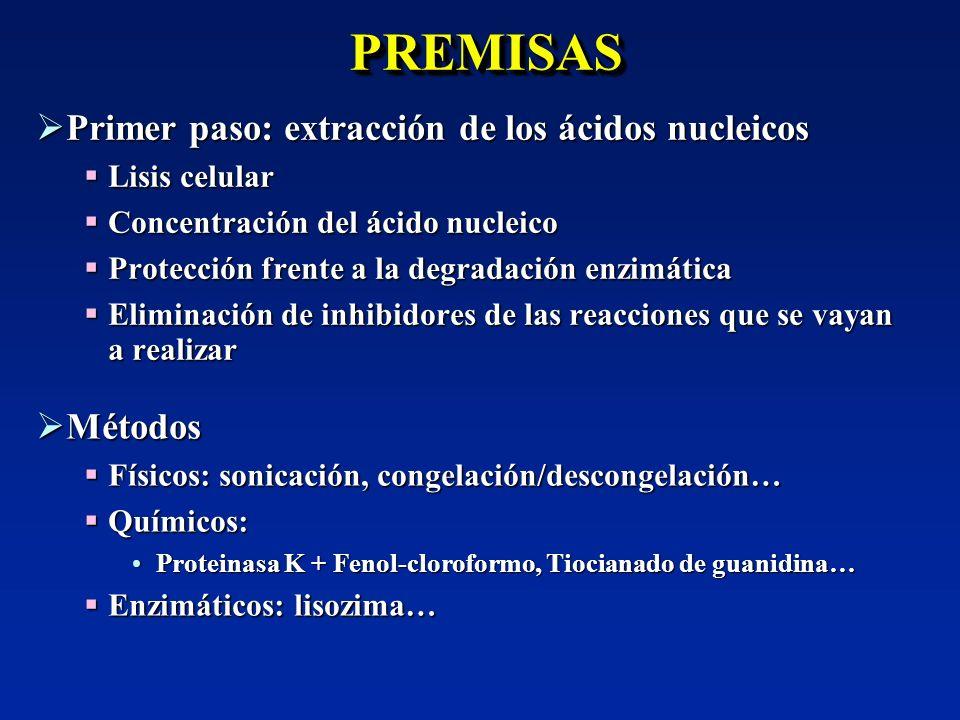 PREMISASPREMISAS Primer paso: extracción de los ácidos nucleicos Primer paso: extracción de los ácidos nucleicos Lisis celular Lisis celular Concentra