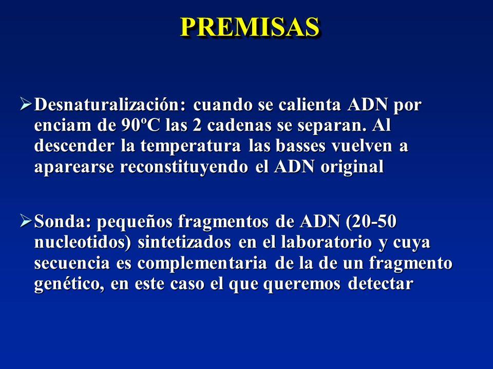 PREMISASPREMISAS Desnaturalización: cuando se calienta ADN por enciam de 90ºC las 2 cadenas se separan. Al descender la temperatura las basses vuelven