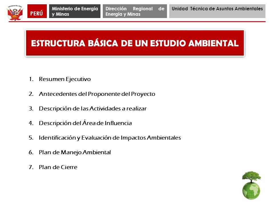 Ministerio de Energía y Minas Dirección Regional de Energía y Minas Unidad Técnica de Asuntos Ambientales PERÚ ESTRUCTURA BÁSICA DE UN ESTUDIO AMBIENT
