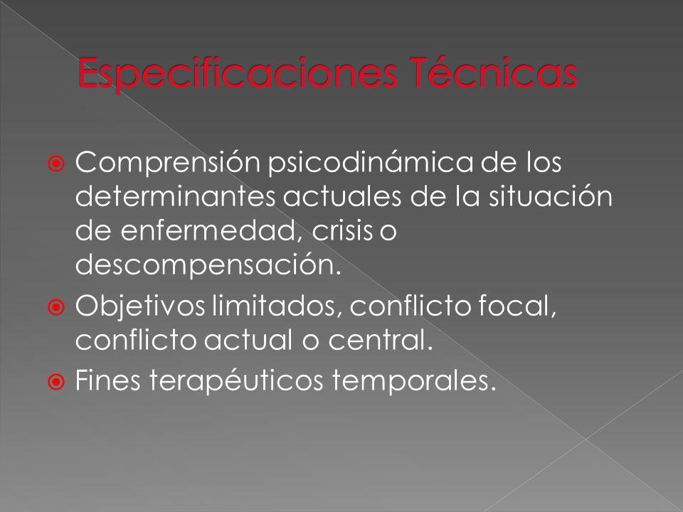 Comprensión psicodinámica de los determinantes actuales de la situación de enfermedad, crisis o descompensación. Objetivos limitados, conflicto focal,