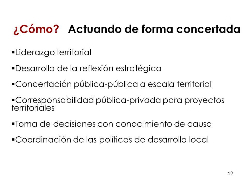 12 Liderazgo territorial Desarrollo de la reflexión estratégica Concertación pública-pública a escala territorial Corresponsabilidad pública-privada para proyectos territoriales Toma de decisiones con conocimiento de causa Coordinación de las políticas de desarrollo local ¿Cómo.