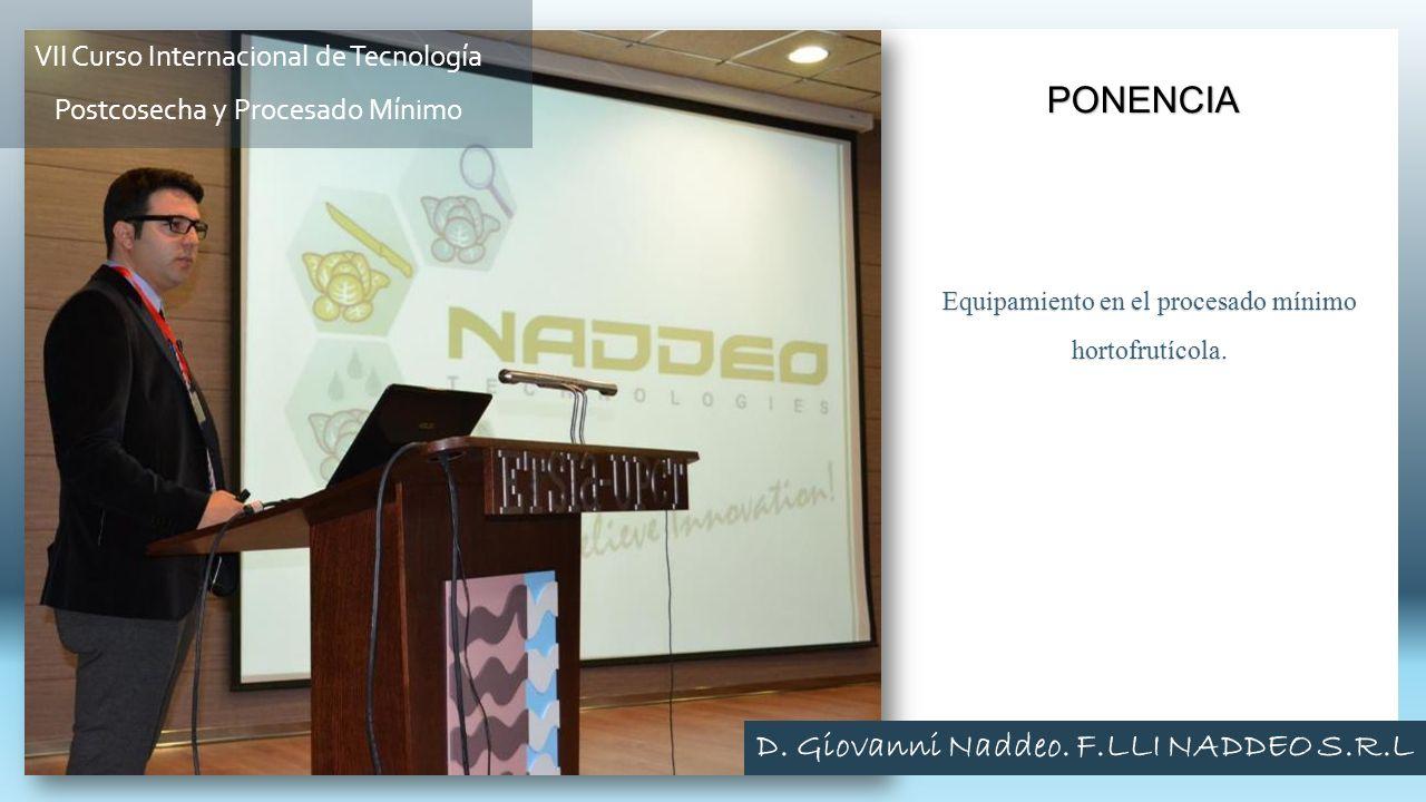 Equipamiento en el procesado mínimo hortofrutícola. PONENCIA VII Curso Internacional de Tecnología Postcosecha y Procesado Mínimo D. Giovanni Naddeo.