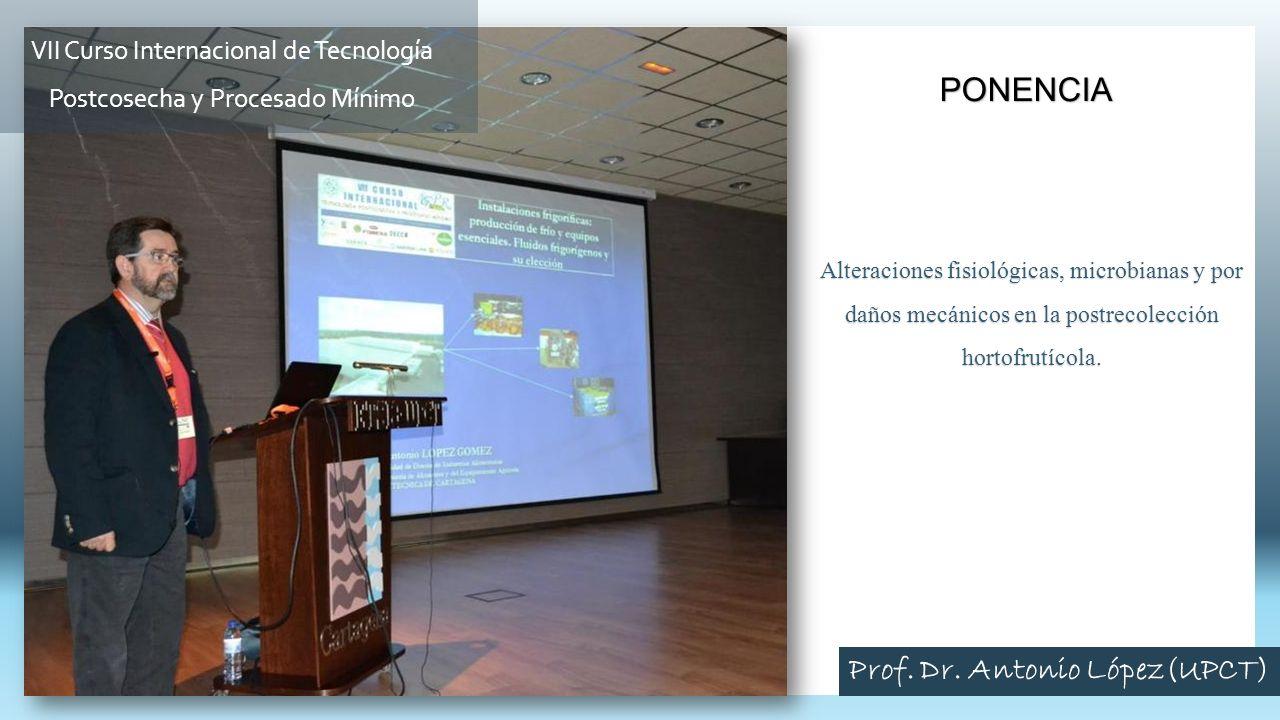 Clausura Curso 2013 Patrocinador (TECNIDEX) D.Álvaro Payá Director Curso Dr.