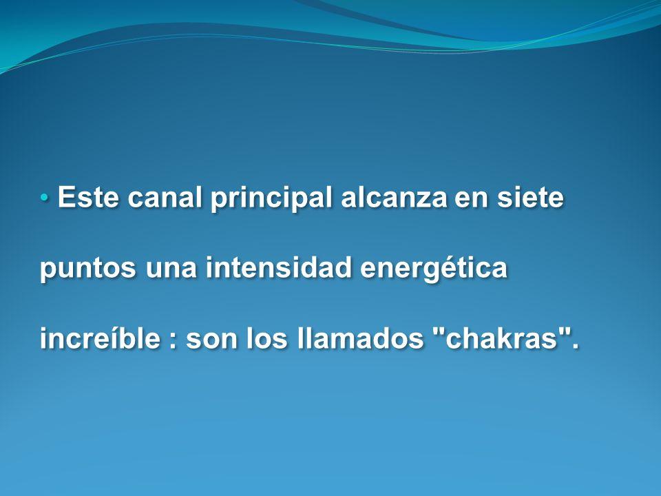 Este canal principal alcanza en siete puntos una intensidad energética increíble : son los llamados chakras .