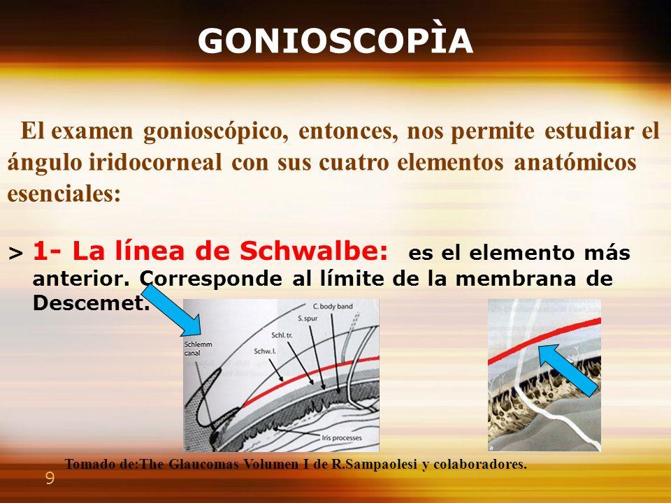 9 GONIOSCOPÌA > 1- La línea de Schwalbe: es el elemento más anterior. Corresponde al límite de la membrana de Descemet. > 4- Banda ciliar : situada en