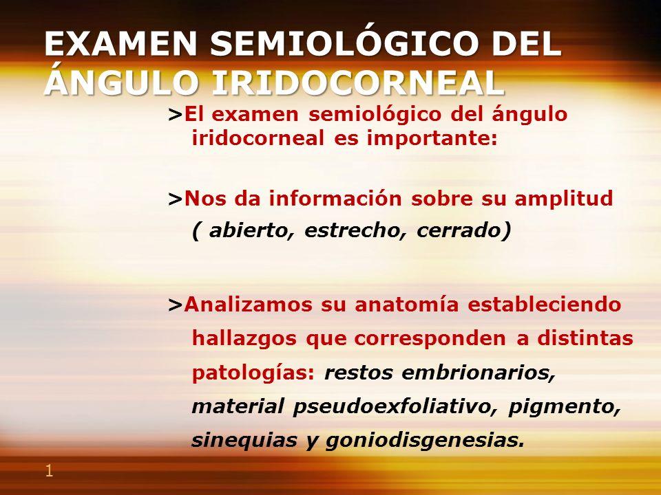 1 EXAMEN SEMIOLÓGICO DEL ÁNGULO IRIDOCORNEAL >El examen semiológico del ángulo iridocorneal es importante: >Nos da información sobre su amplitud ( abi