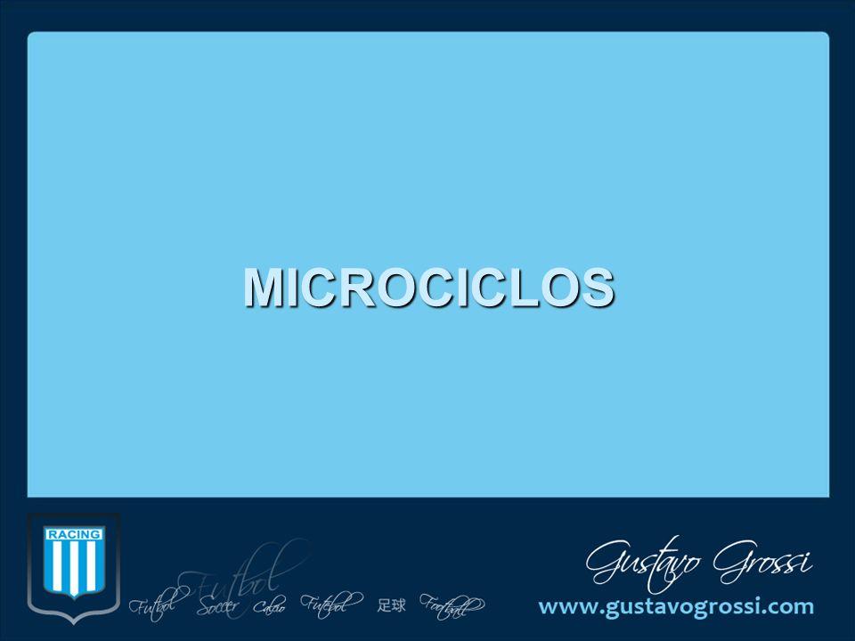 MICROCICLOS