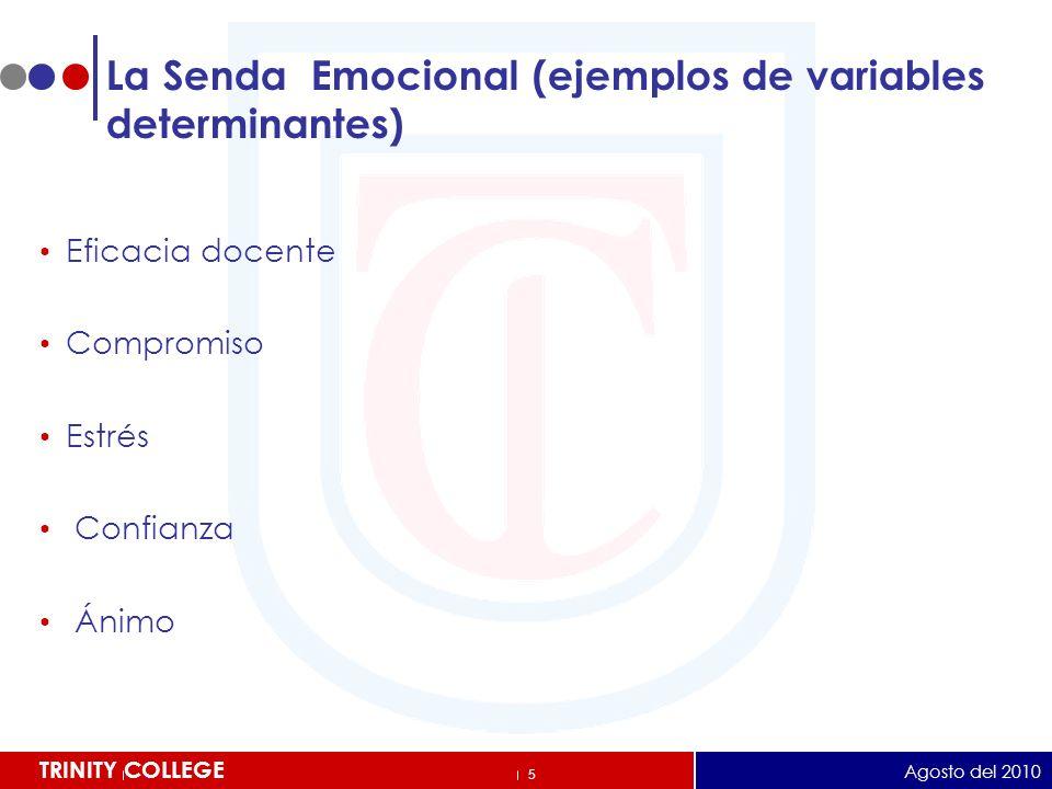 26 TRINITY COLLEGE LOS CINCO PAPELES DE LA MEMORIA HUMANA.