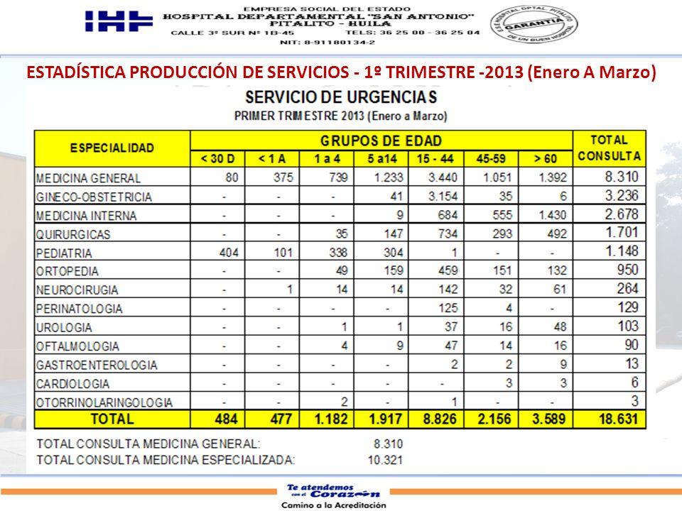 ESTADÍSTICA PRODUCCIÓN DE SERVICIOS - 1º TRIMESTRE -2013 (Enero A Marzo)