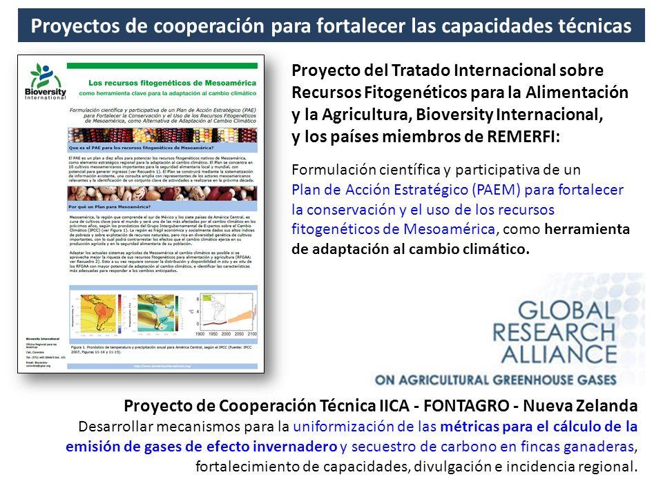Proyectos de cooperación para fortalecer las capacidades técnicas Proyecto de Cooperación Técnica IICA - FONTAGRO - Nueva Zelanda Desarrollar mecanism