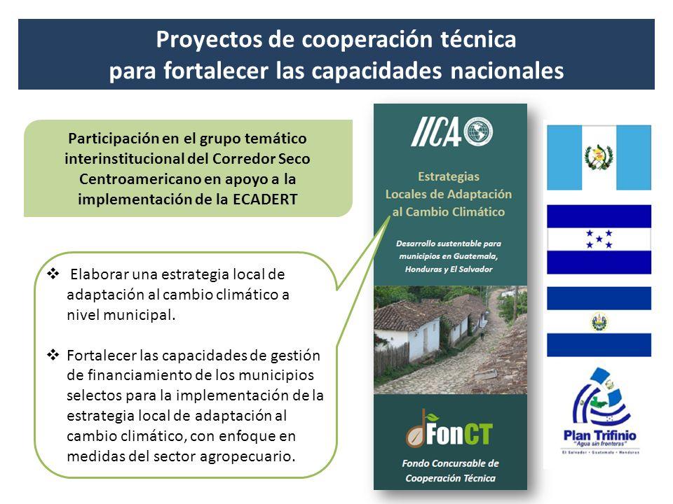 Proyectos de cooperación técnica para fortalecer las capacidades nacionales Participación en el grupo temático interinstitucional del Corredor Seco Ce