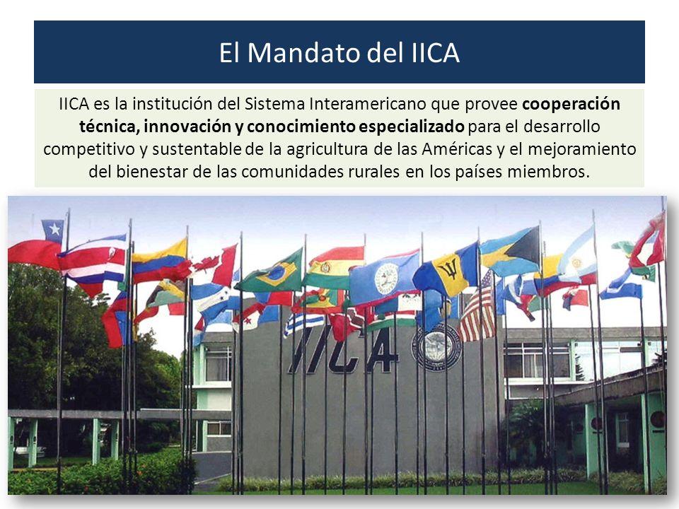 IICA es la institución del Sistema Interamericano que provee cooperación técnica, innovación y conocimiento especializado para el desarrollo competiti