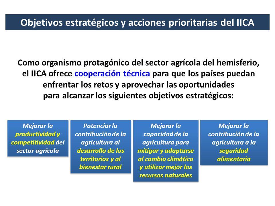 Objetivos estratégicos y acciones prioritarias del IICA Como organismo protagónico del sector agrícola del hemisferio, el IICA ofrece cooperación técn