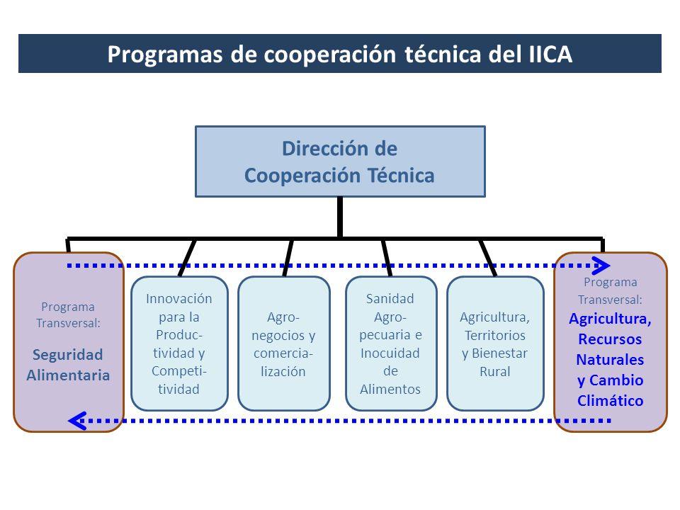 Dirección de Cooperación Técnica Agro- negocios y comercia- lización Sanidad Agro- pecuaria e Inocuidad de Alimentos Innovación para la Produc- tivida