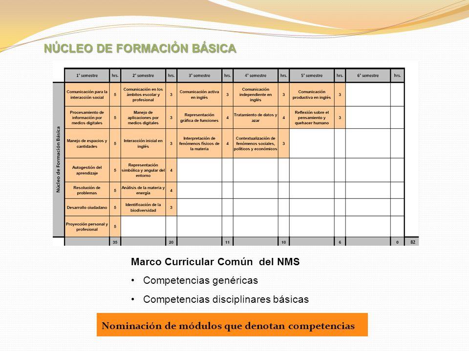 Marco Curricular Común del NMS Competencias genéricas Competencias disciplinares básicas NÚCLEO DE FORMACIÓN BÁSICA Nominación de módulos que denotan
