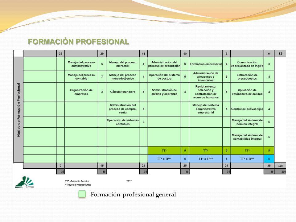 Formación profesional general FORMACIÓN PROFESIONAL