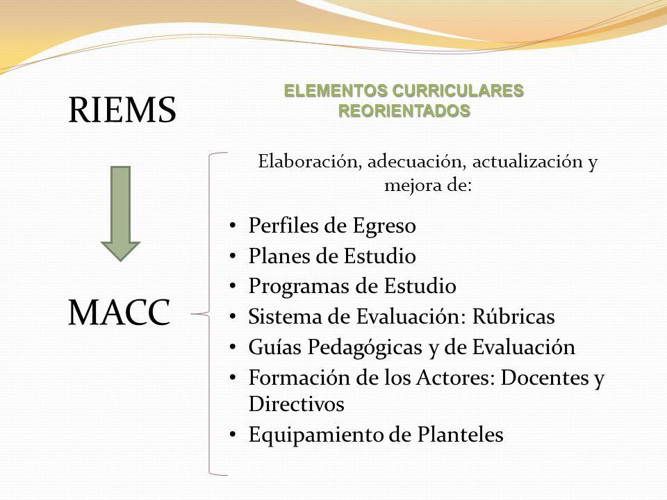 Perfiles de Egreso Planes de Estudio Programas de Estudio Sistema de Evaluación: Rúbricas Guías Pedagógicas y de Evaluación Formación de los Actores: