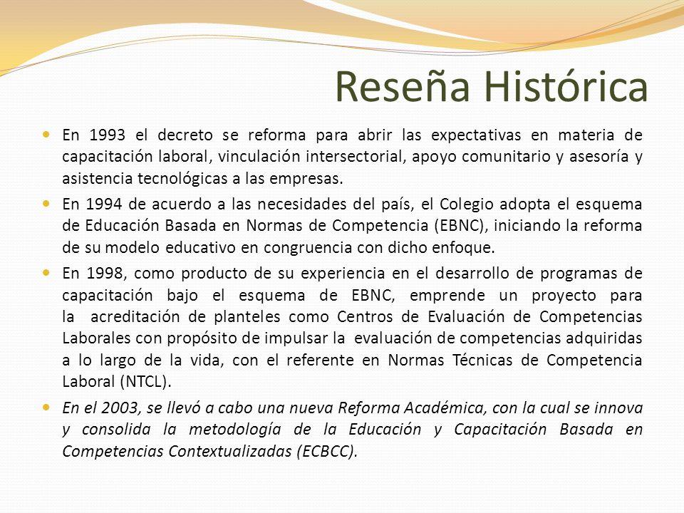 Reseña Histórica En 1993 el decreto se reforma para abrir las expectativas en materia de capacitación laboral, vinculación intersectorial, apoyo comun