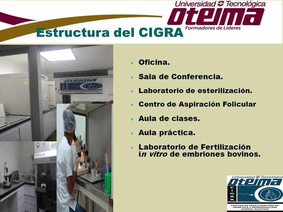 Oficina. Sala de Conferencia. Laboratorio de esterilización. Centro de Aspiración Folicular Aula de clases. Aula práctica. Laboratorio de Fertilizació