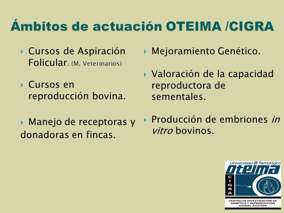Cursos de Aspiración Folicular. (M. Veterinarios) Cursos en reproducción bovina. Manejo de receptoras y donadoras en fincas. Mejoramiento Genético. Va