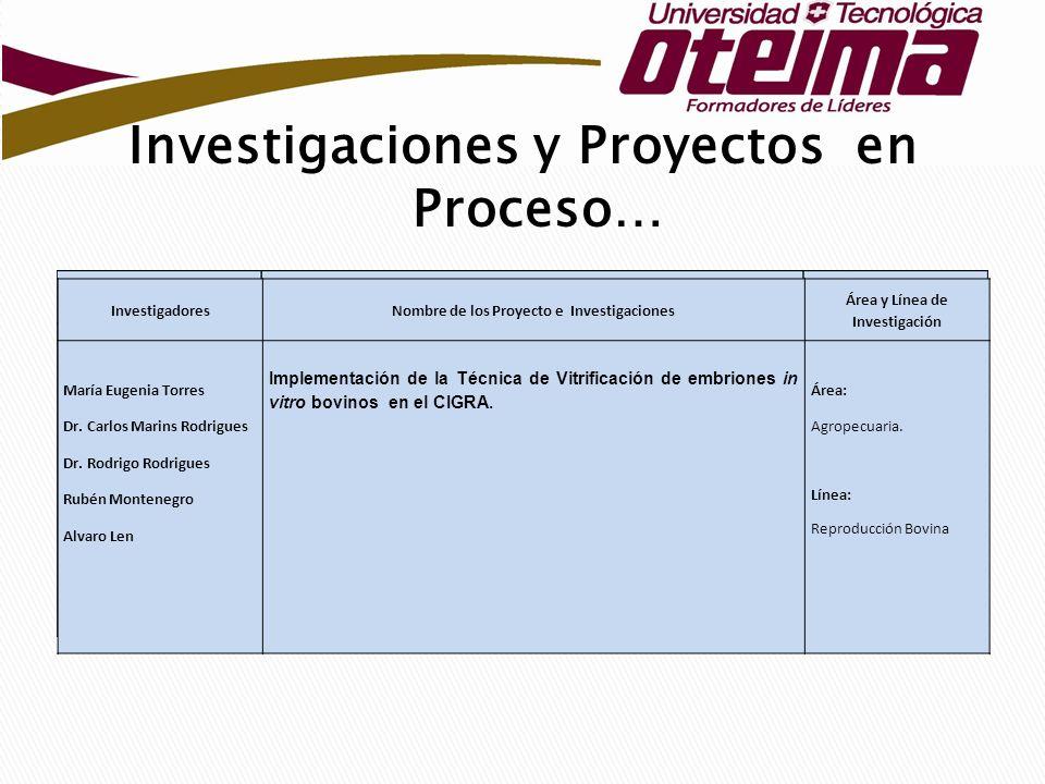 Investigaciones y Proyectos en Proceso… InvestigadoresNombre de los Proyecto e Investigaciones Área y Línea de Investigación María Eugenia Torres Dr.