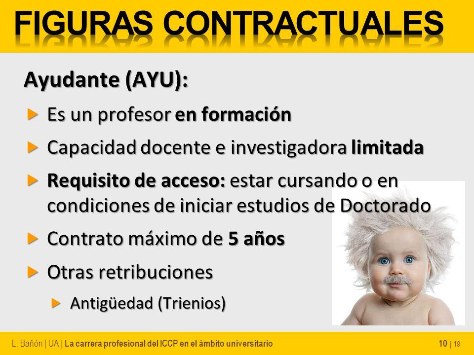Ayudante (AYU): Es un profesor en formación Es un profesor en formación Capacidad docente e investigadora limitada Capacidad docente e investigadora l