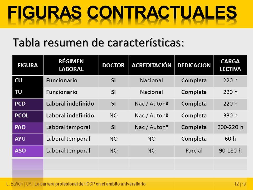 12 | 19 Tabla resumen de características: L. Bañón | UA | La carrera profesional del ICCP en el ámbito universitario
