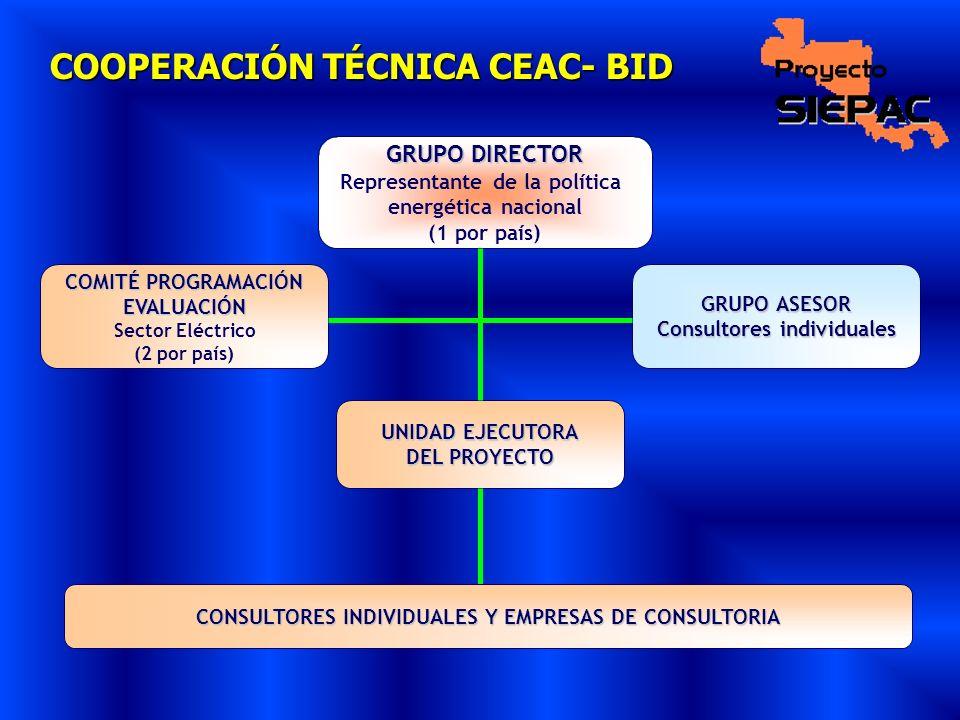 COOPERACIÓN TÉCNICA CEAC- BID GRUPO DIRECTOR Representante de la política energética nacional (1 por país) COMITÉ PROGRAMACIÓN EVALUACIÓN Sector Eléct