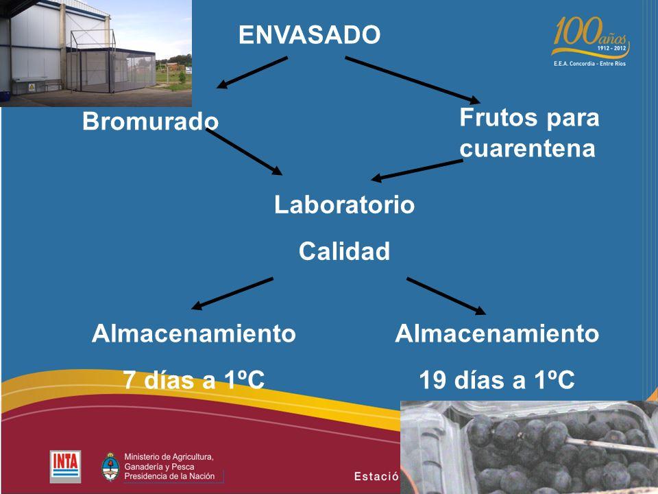 ENVASADO Bromurado Almacenamiento 7 días a 1ºC Frutos para cuarentena Almacenamiento 19 días a 1ºC Laboratorio Calidad