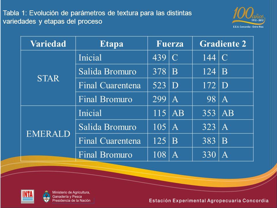 Tabla 1: Evolución de parámetros de textura para las distintas variedades y etapas del proceso VariedadEtapaFuerzaGradiente 2 STAR Inicial439C144C Salida Bromuro378B124B Final Cuarentena523D172D Final Bromuro299A98A EMERALD Inicial115AB353AB Salida Bromuro105A323A Final Cuarentena125B383B Final Bromuro108A330A