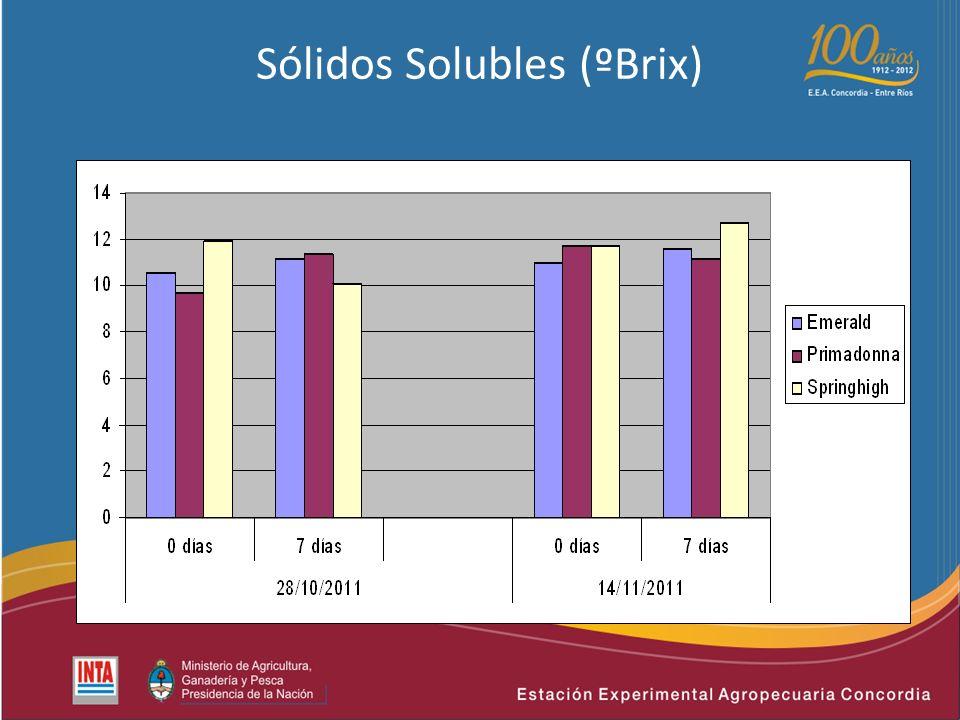 Sólidos Solubles (ºBrix)