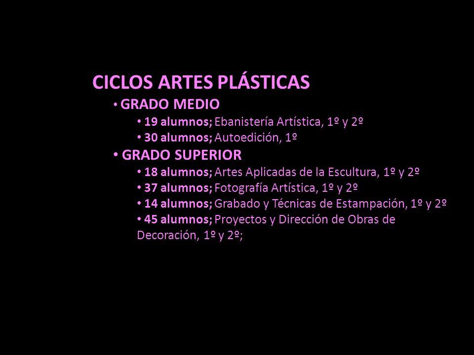 CICLOS ARTES PLÁSTICAS GRADO MEDIO 19 alumnos; Ebanistería Artística, 1º y 2º 30 alumnos; Autoedición, 1º GRADO SUPERIOR 18 alumnos; Artes Aplicadas d