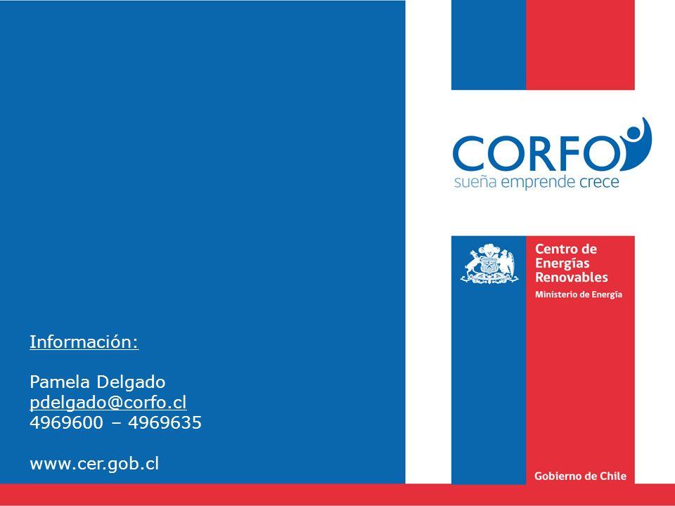 Información: Pamela Delgado pdelgado@corfo.cl 4969600 – 4969635 www.cer.gob.cl