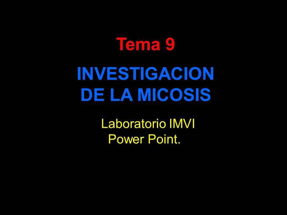 Tema 9 INVESTIGACION DE LA MICOSIS Laboratorio IMVI Power Point.