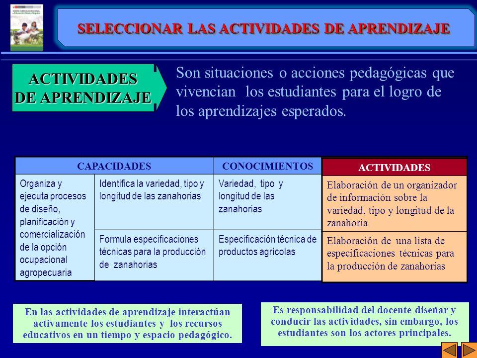 Son situaciones o acciones pedagógicas que vivencian los estudiantes para el logro de los aprendizajes esperados. ACTIVIDADES DE APRENDIZAJE Es respon