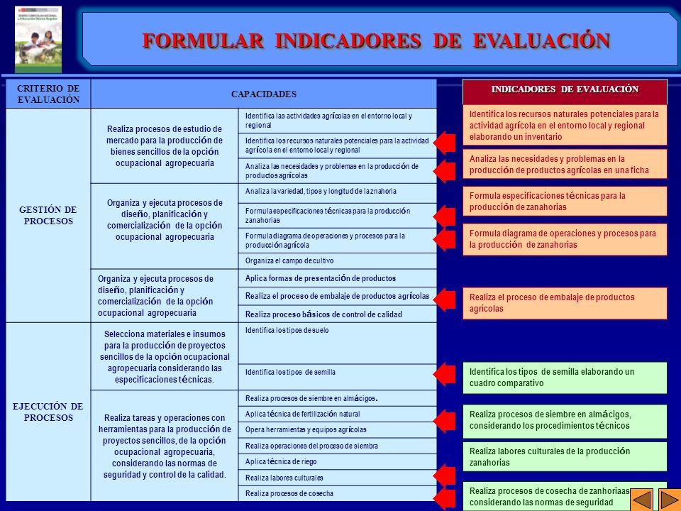 CRITERIO DE EVALUACIÓN CAPACIDADES GESTIÓN DE PROCESOS Realiza procesos de estudio de mercado para la producci ó n de bienes sencillos de la opci ó n