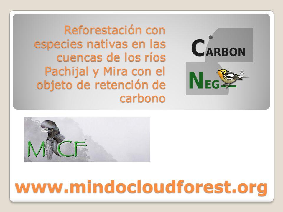 Reforestación con especies nativas en las cuencas de los ríos Pachijal y Mira con el objeto de retención de carbono www.mindocloudforest.org